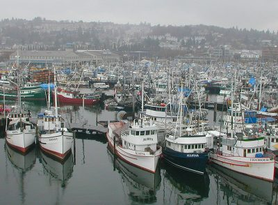 Boats tied up at Seattle's Fishermen's Terminal. Susan Chambers photo.
