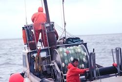 Bristol Bay gillnetter