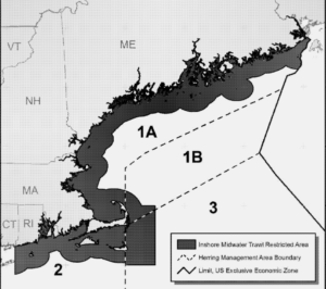 The proposed inshore midwater trawl restricted area would extend 12 miles offshore, and bump out to 20 miles off Cape Cod. NEFMC graphic.
